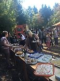 Bolonka Zwetna Treffen 2016